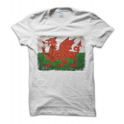 Galles Vintage Flag