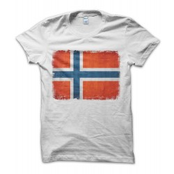 Norway Vintage Flag