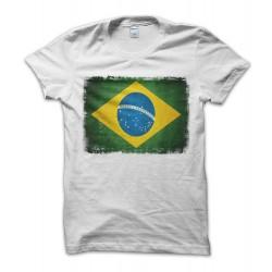 Brasile Vintage Flag