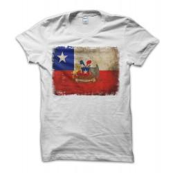 Cile Vintage Flag