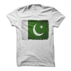 Pakistan Vintage Flag